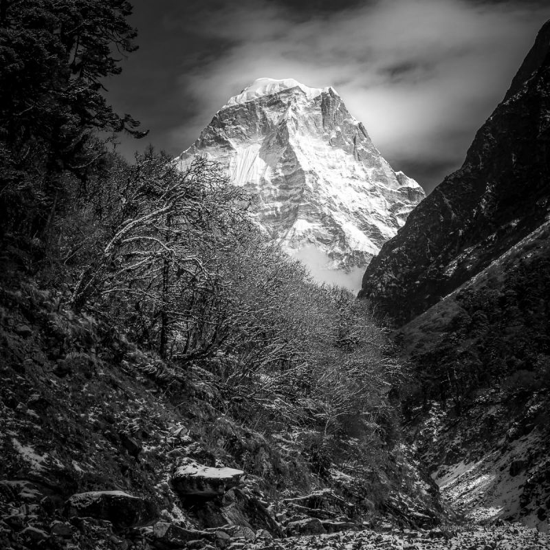 03. Himalayas III